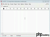 Variables in PHP - thumb